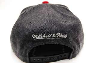 Toronto Raptors GREY ARCH Snapback Basketball Mitchell & Ness Hat Mens