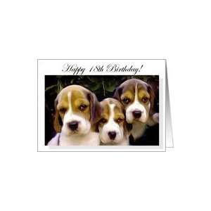 Happy 18th Birthday Beagle Puppies Card: Toys & Games