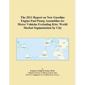 The 2011 Report on New Gasoline Engine Fuel Pump Assemblies for Motor
