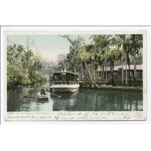 Reprint On the Tomoka, Ormond, Fla 1902 1903:  Home