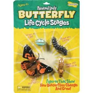 9 Pack INSECT LORE BUTTERFLY LIFE CYCLE STAGES: Everything Else