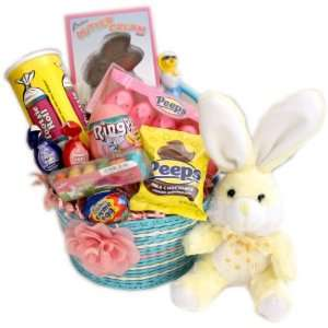 Pink and Blue Easter Bunny Basket  Grocery & Gourmet Food