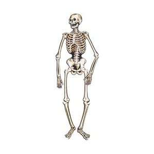 55 in. Nite Glo Skeleton: Toys & Games