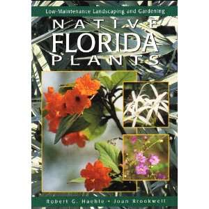 Native Florida Plants Low Maintenance Landscaping and