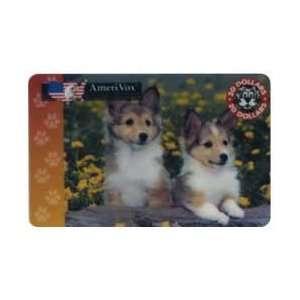 20. Two Collie Dog Puppies In Yellow Flower Garden