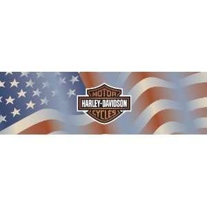Point Americana Harley Davidson Window Graphic