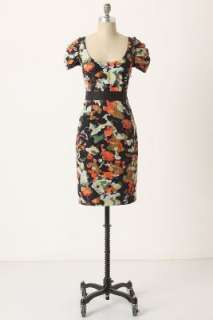 Anthropologie   Pittore Dress