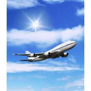 Airliner Aircraft in the Blue Sky   Peel and Stick Wall Decal by