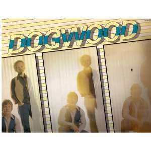 DOGWOOD: ORDINARY MAN (RELIGIOUS LP VINYL, 1979): DOGWOOD