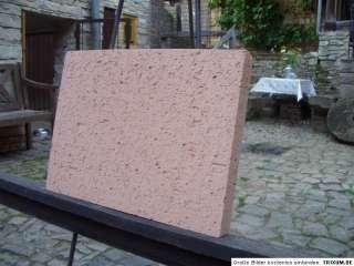 Schamottsteine Schamottstein Schamotte 400 x 300 x 40