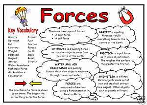 Science Display Resource   Forces Fact Mat
