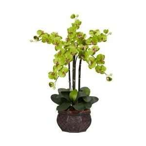 Phalaenopsis with Decorative Vase Silk Flower Arrangement   Nearly