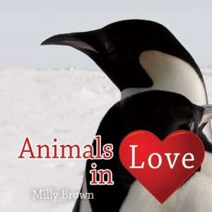 Animals in Love (9781840247145): Milly Brown: Books