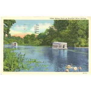 1940s Vintage Postcard Glass Bottom Boats on Silver Springs Florida