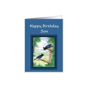 Happy Birthday Son General Blank Stellar Jay, Birds Card: Toys & Games